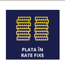 Plata in rate fixe